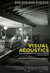 VisualAcoustics7